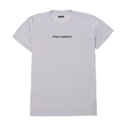 Explorio Stay Curious T-Shirt Gray