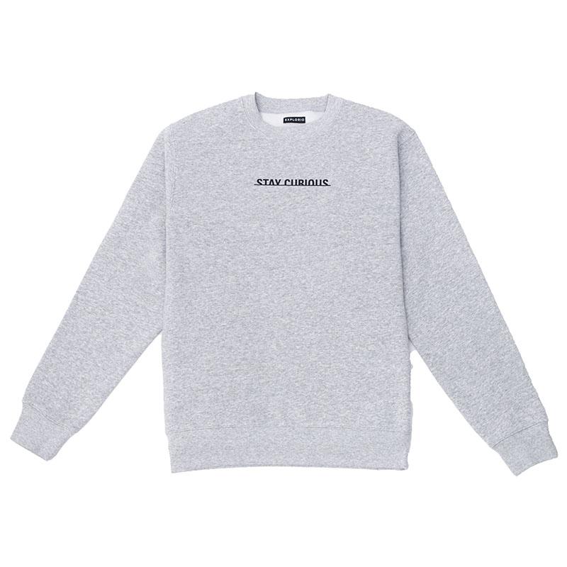 Stay Curious Sweatshirt Gray